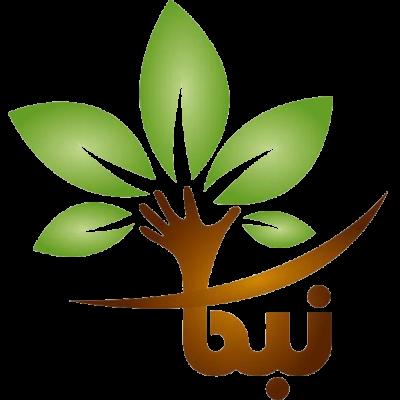 شرکت نوین برنامه کارا شریف
